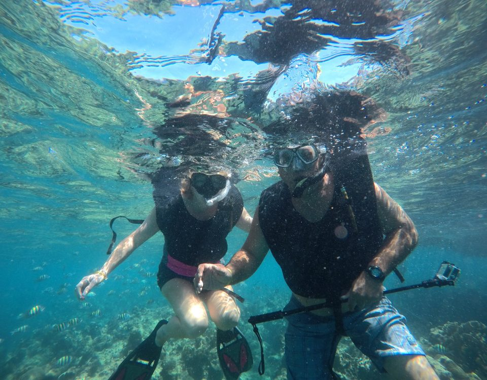 Aventuras en Jamaica - Main