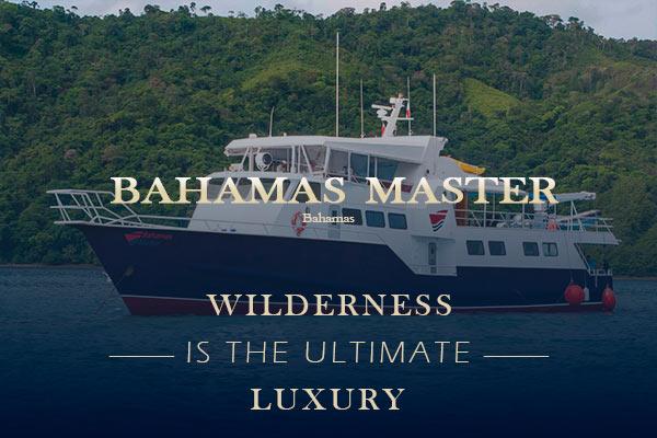 Bahamas Liveaboard Diving - Bahamas master