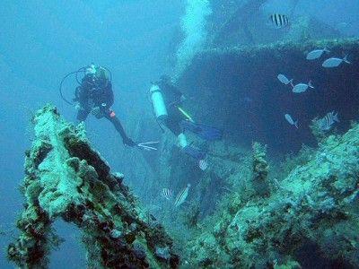 diving bayahibe