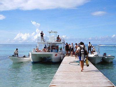 snorkel en bayahibe