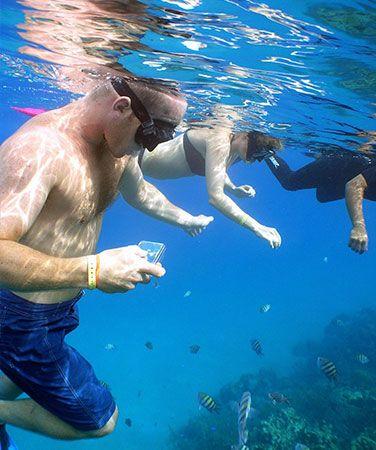 Bayahibe Snorkeling