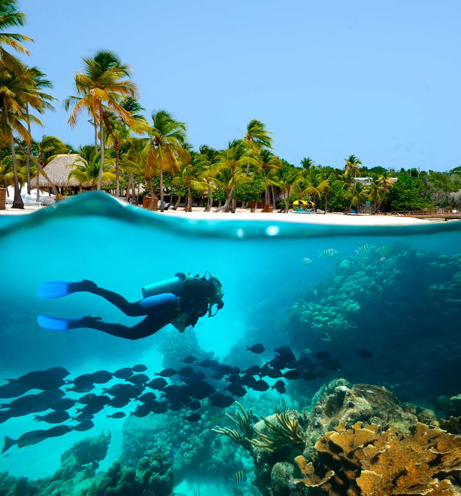 Best scuba diving destinations for open water divers - caribbean
