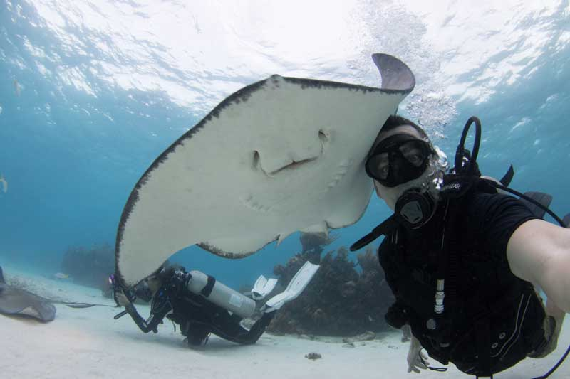 Best scuba diving destinations for open water divers - cayman island