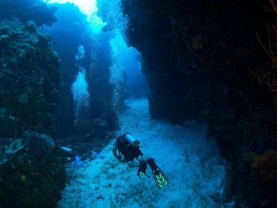 cozumel day trips