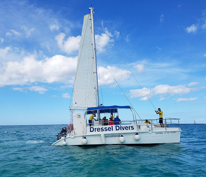 Catamaran Tour 800x600