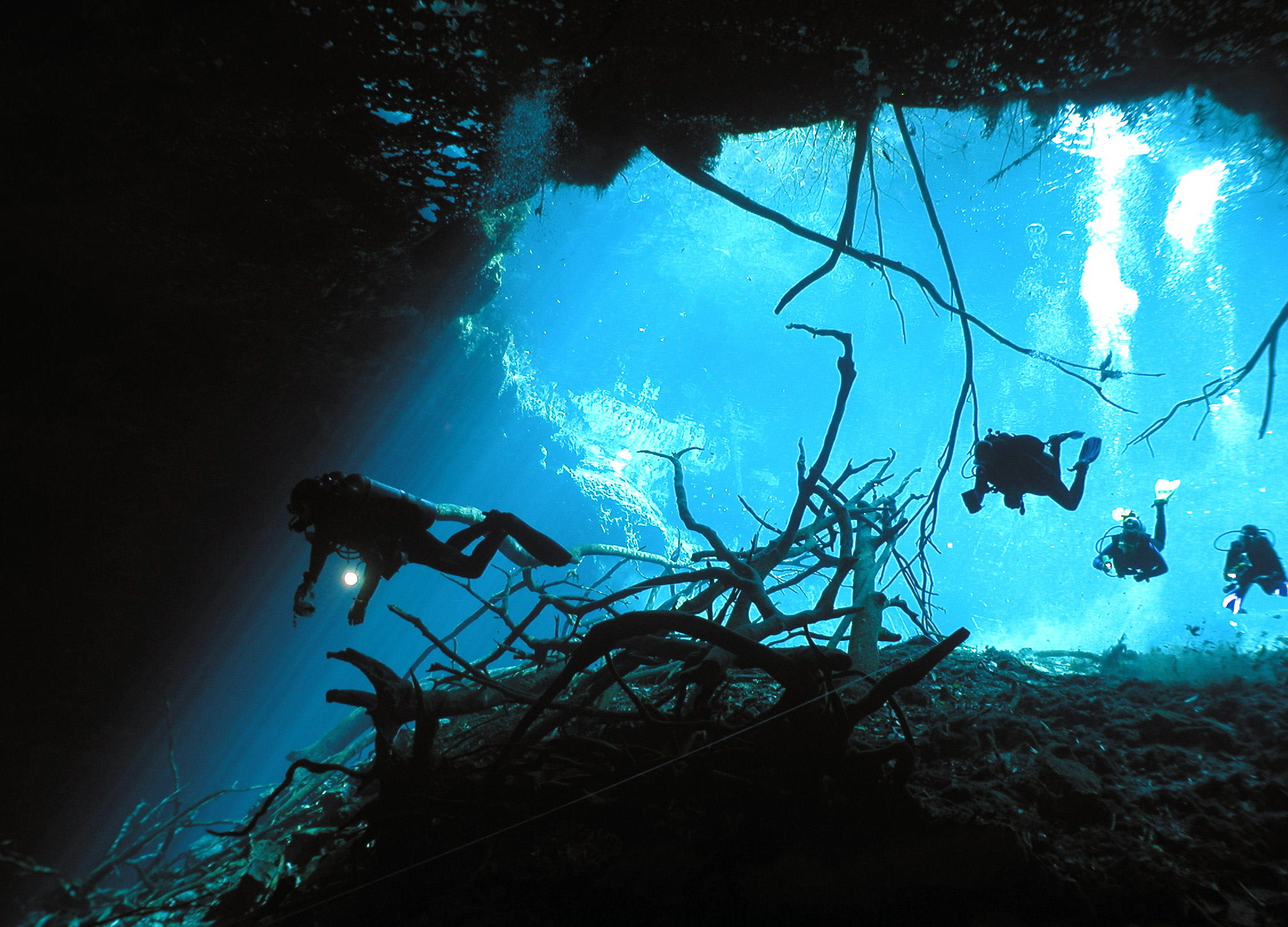 Cenotes In the Riviera Maya - Right pic