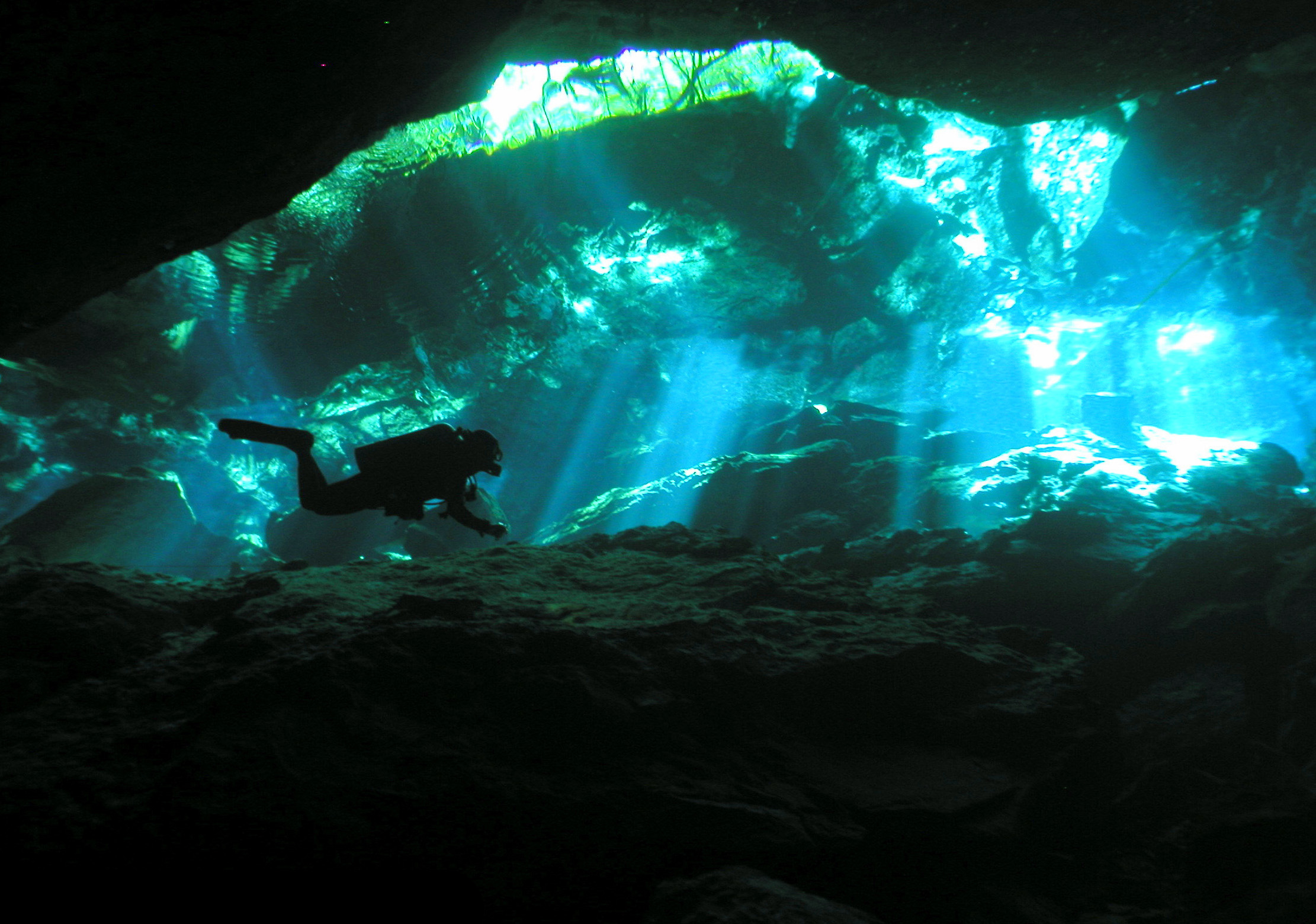 Cenotes In the Riviera Maya - Left pic