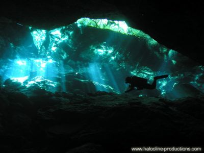 Cenotes Diving Excursion