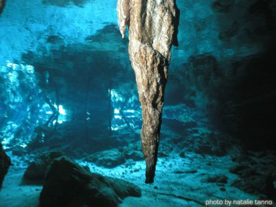 tour cenote dive