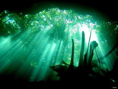 cenote diving tours