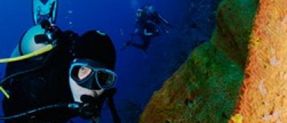 cozumel_scuba_diving-251x300editada