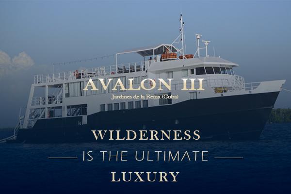 Cuba Liveaboard Diving - Avalon