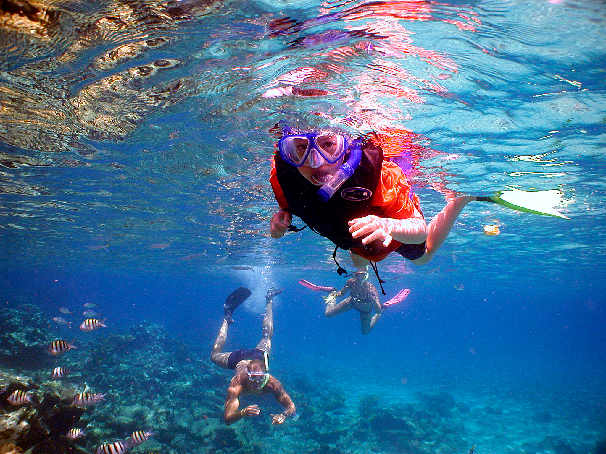 Difference between Snorkeling and Scuba Diving - snorkeling1