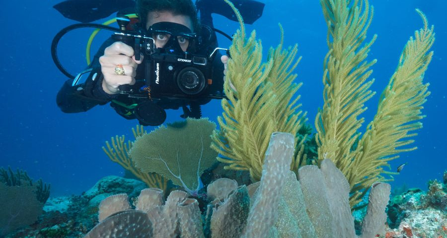 Dive pictures - main