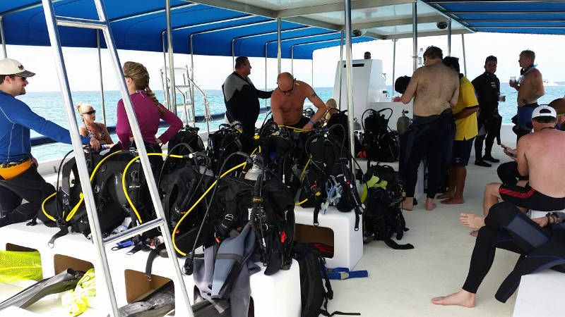 Divemaster Jobs & Careers With Dressel Divers