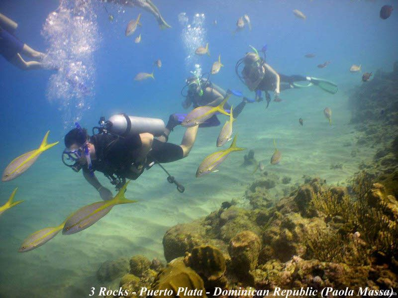 underwater videographer divemaster needed  Annonce  Offre Emploi Sint Maarten