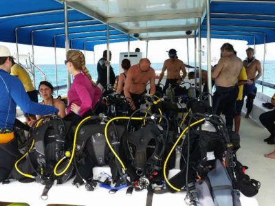 tour divers day