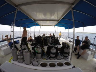 divers day excursions