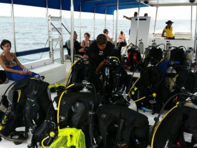 divers day tours