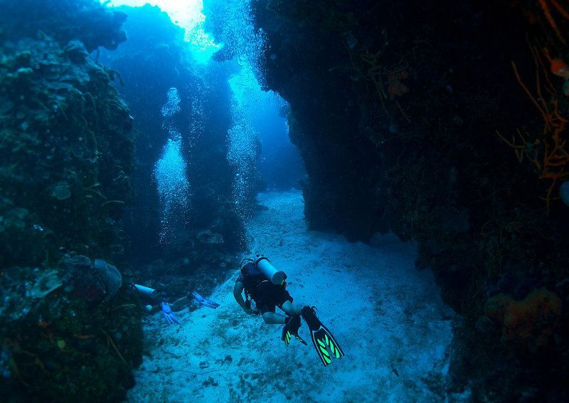 diving instructor jobs  u0026 careers with dressel divers