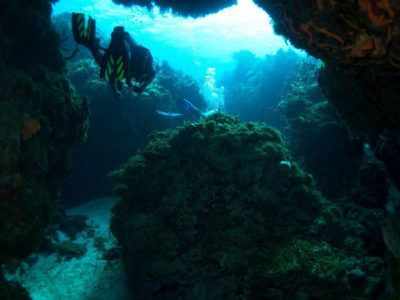 empleo instructores de buceo