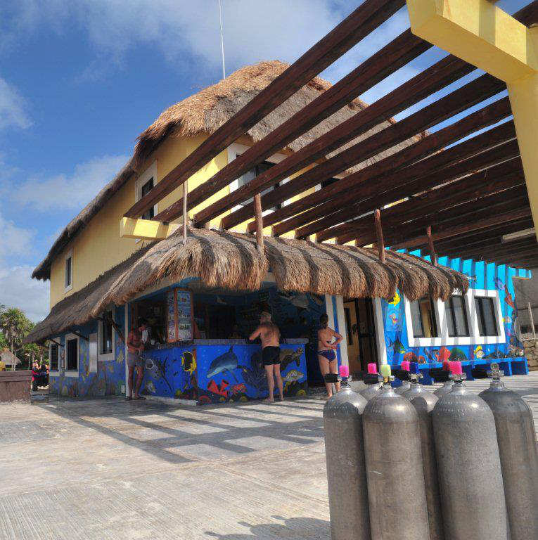 Diving Instructor Jobs And Careers with Dressel Divers