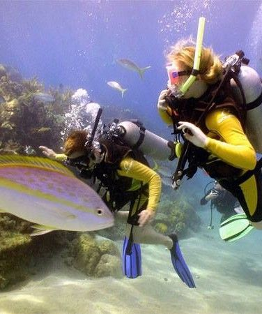 Scuba Diving and Water Sports
