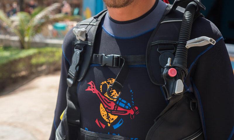 Diving fashion - wetsuit