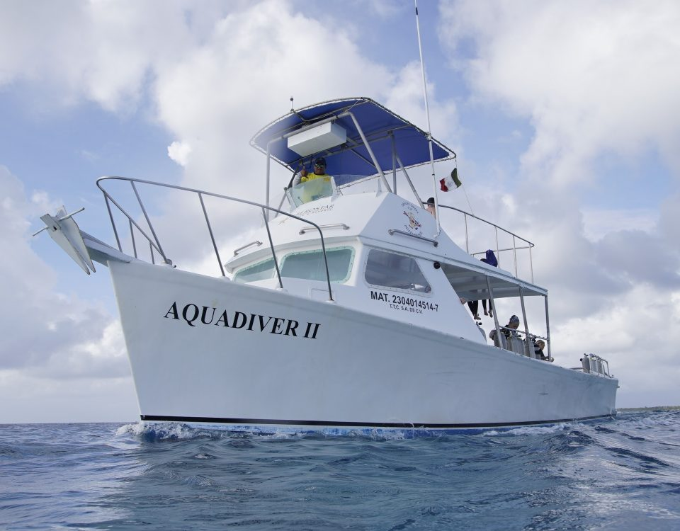 Dos and don'ts on a dive boat main