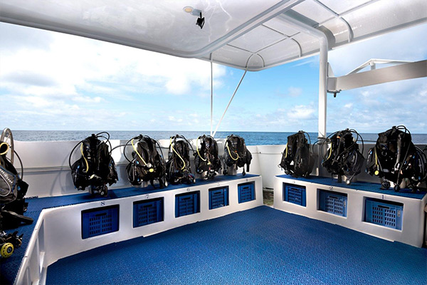 Galapagos Liveaboard Diving - Deck