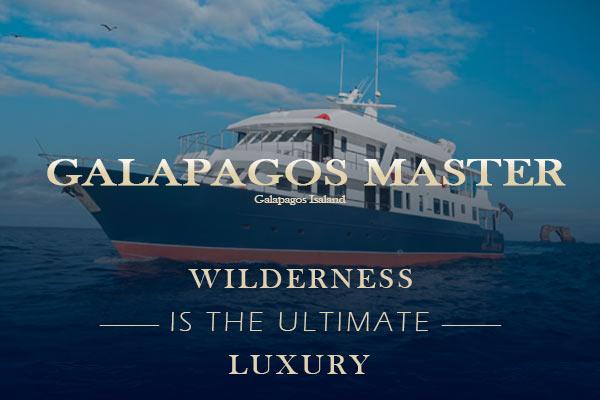 Galapagos Liveaboard Diving - Galapagos Master