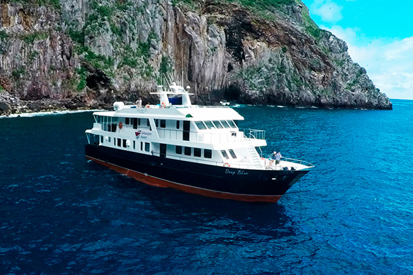 Galpagos Liveaboard Diving - Vessel 1