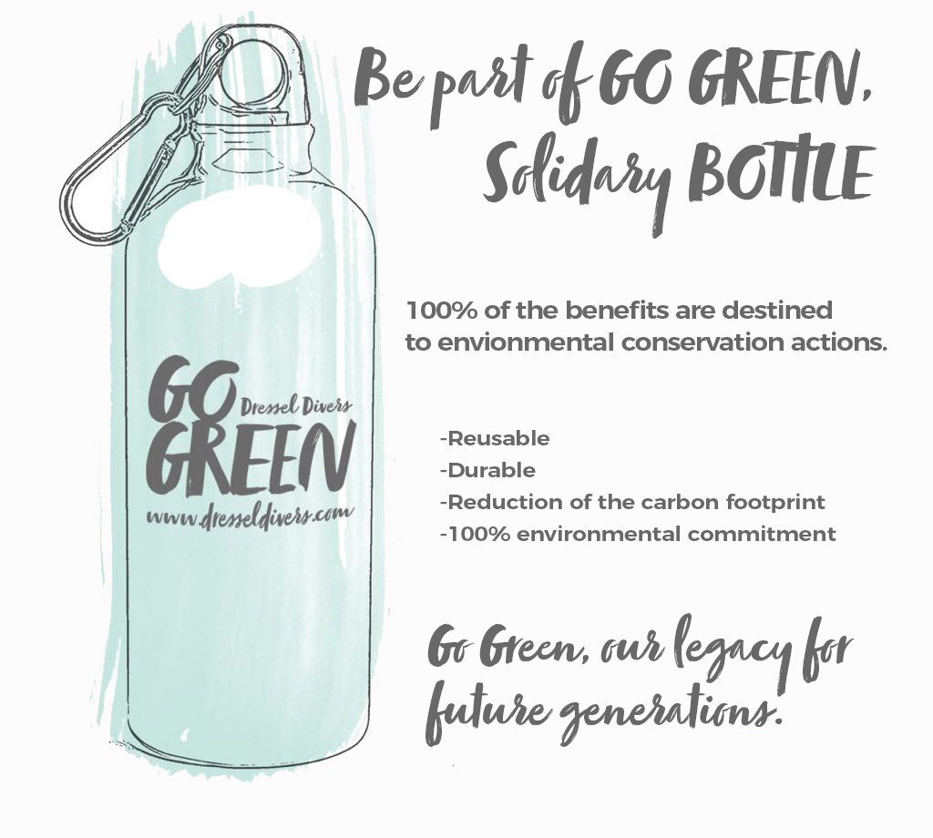 Go Green Bottle grey v2