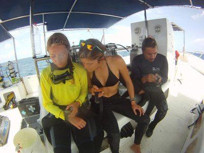 IDC Dressel Divers 1