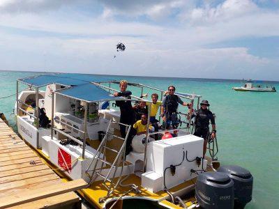 IDC Dressel Divers 12