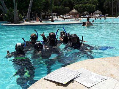 IDC Dressel Divers 4