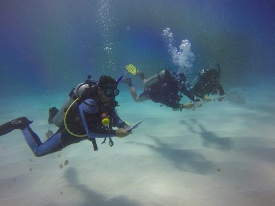 IDC Dressel Divers 9