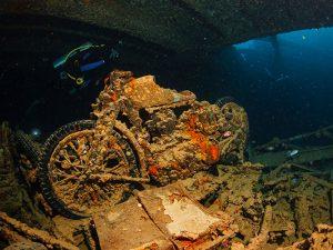 Liveaboard-Diving - Red Sea
