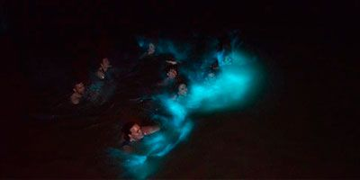 Luminous_Lagoon_Excursion
