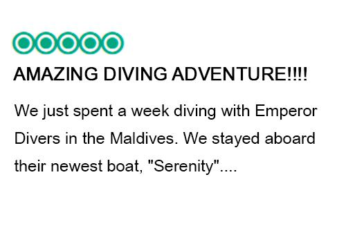 Maldives Liveaboard diving -Tripadvisor Emperor Serenity 3 x2