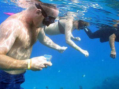 snorkeling mayan riviera