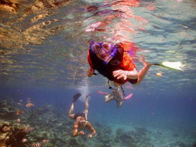 snorkeling riviera maya excursions
