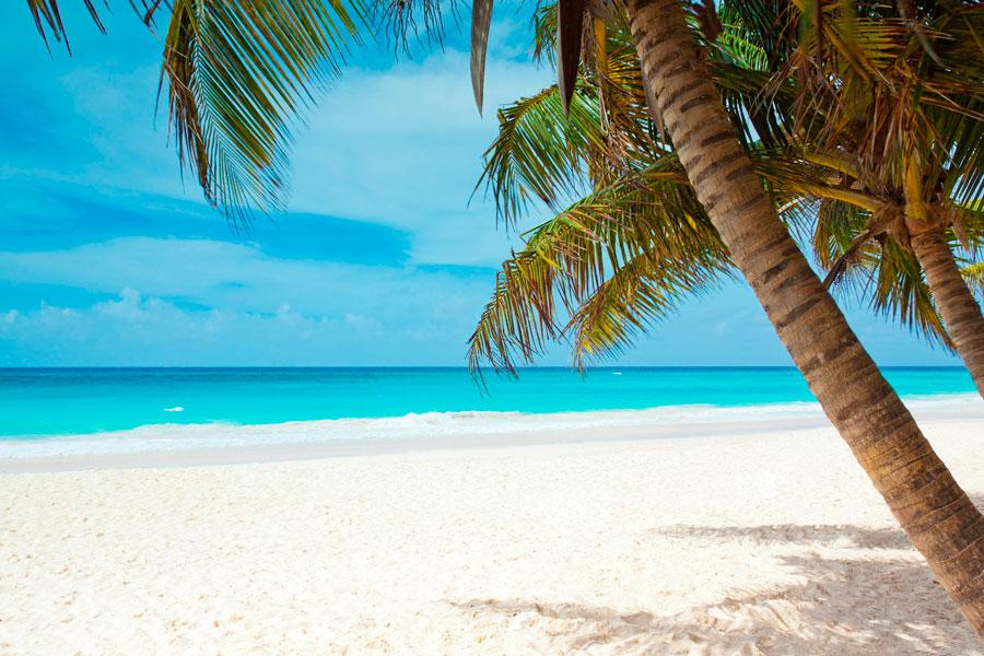 Mejores cosas que hacer en Punta Cana - Catalina