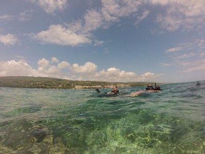 Montego Bay Snorkelling