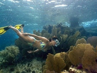 Montego_Bay_Marine_Park_Excursion_14