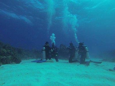 tour montego bay marine park jamaica