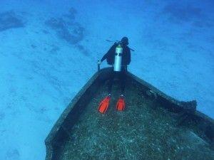 PADI Adventure Diver Courses