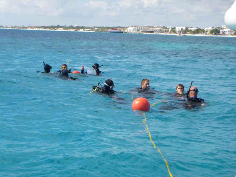 PADI Divemaster Courses Internships