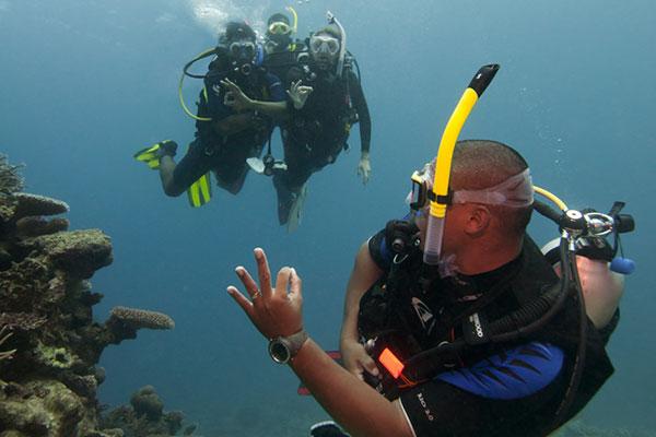 PADI Elearning - Divemaster Course