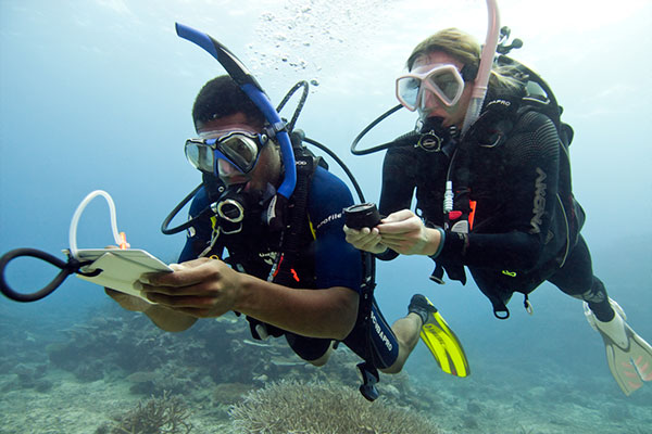 PADI Elearning - Open Water Diver